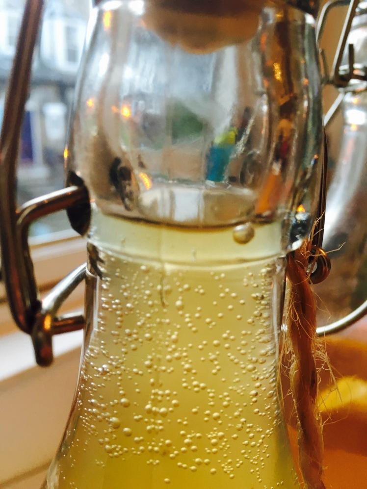 fizzy kombucha bottle