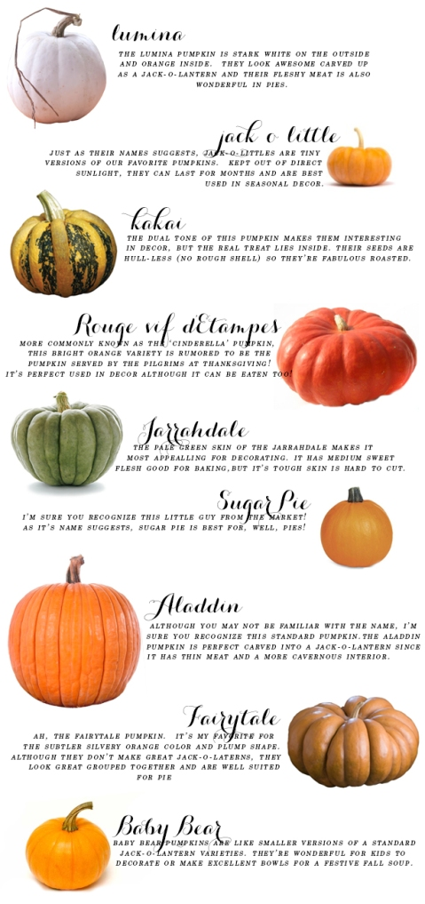ultimate-pumpkin-guide