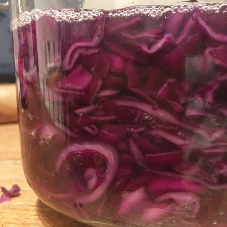 Homemade purple sauerkraut