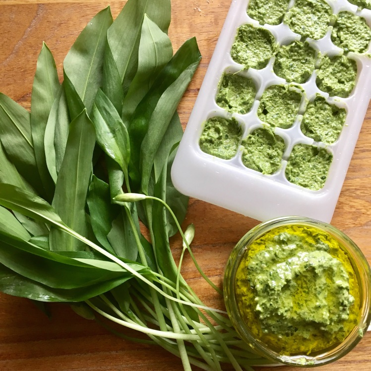 Locally foraged wild garlic pesto